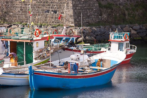 Fishing, Boats, Portuguese, Acores, Harbour, Fishery