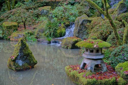 Japanese, Garden, Fall, Portland, Oregon, Nature