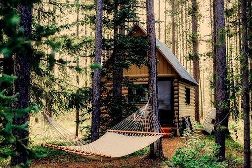 Shack, Hut, Log Cabin, Landscape, Hammock, Forest