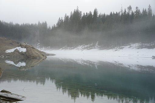 Lake, Snow, Landscape, Winter, Bergsee, Alpine, Trees