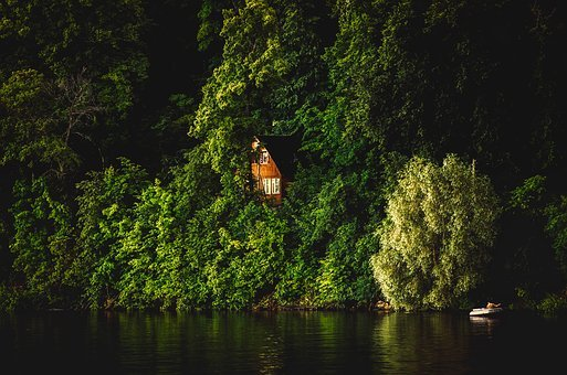 Cabin, Cottage, Lake, Forest, Trees, Woods, Remote