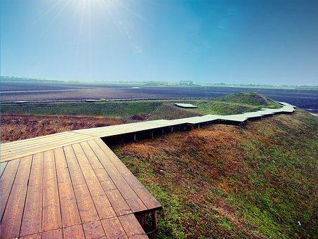 Path, Away, Wood, Sky, Web, Migratory Path, Hiking