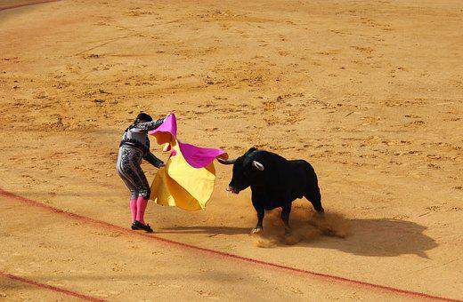 Seville, Bull Fighting, Bull