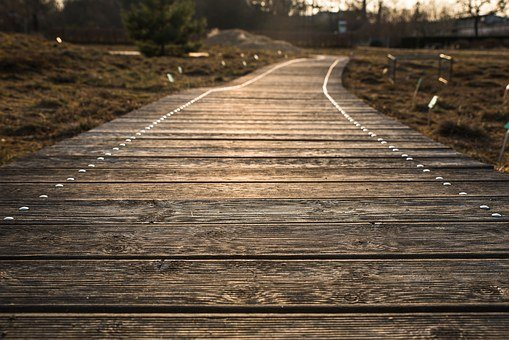Away, Web, Path, Wooden Track, Wood Planks, Sunset