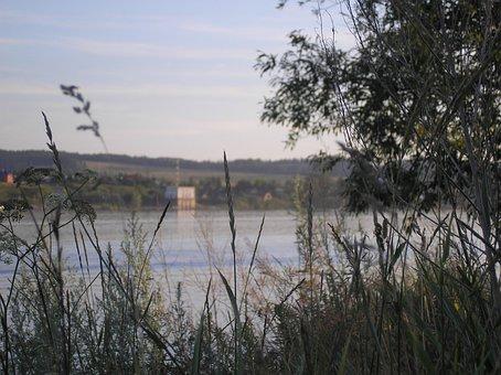 River, Beach, Grass, Sky, Branch, Evening, Nature