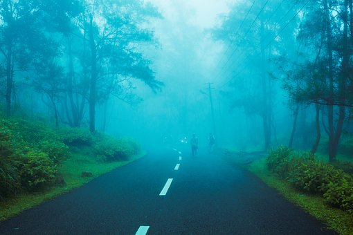 Hill, Hill Station, Foggy, India, Nature, Travel
