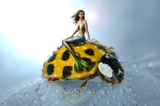 Mermaid, Ladybug, Water Creature, Mystical, Female