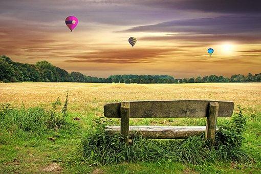 Bank, Meadow, Park, Forest, Sky, Landscape, Nature