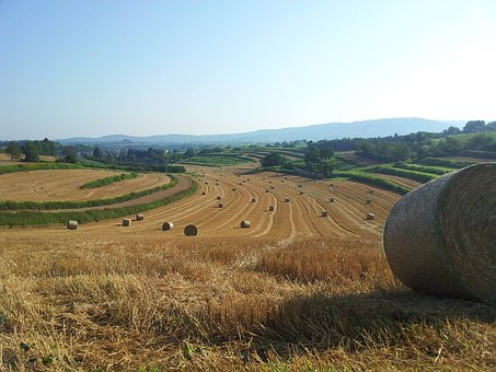 Straw, Autumn, Straw Bales, Harvest, Agriculture