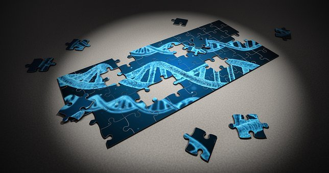 Puzzle, Dna, Research, Genetic, Piece, 3d, Healthcare