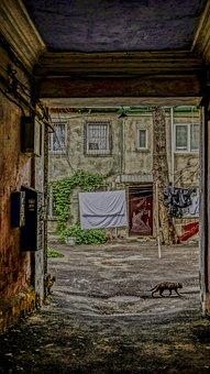 Odessa, Cat, Arch, Yard, Linen, Sheet, Door