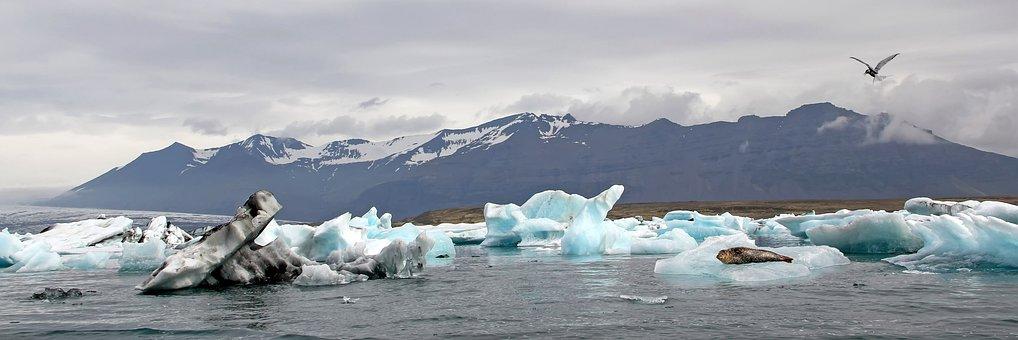 Lagoon Jökulsárlón, Iceland, Windmill Gard, Iceberg