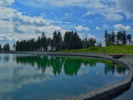 Pond, Storage Pond, Mirroring, Sky, Forest, Trees