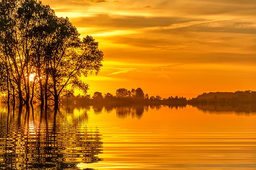Sunset, Sun, Holiday, Nature, Tree, Isolated, Scenic