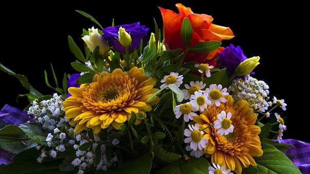 Bouquet, Flowers, Valentine's Day, Orange, Rose