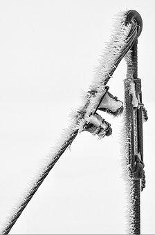 Power Poles, Winter, Cold, Wintry, Snow Magic, Frost