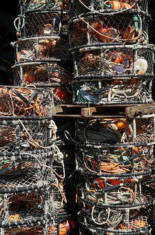 Crab, Pots, Industry, Food, Sea, Seafood, Fishing