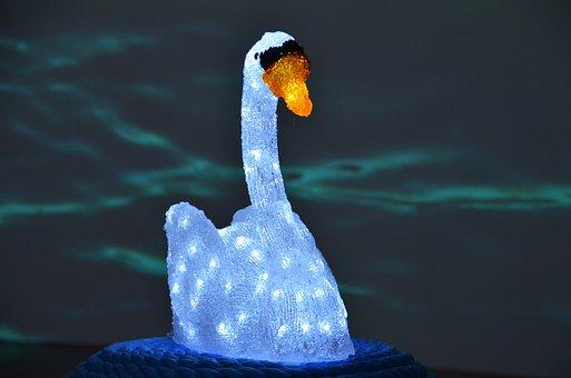 Art, Art Installation, Installation, Swan, Glass