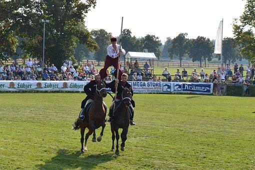 Hungarian Post, Horse, Kaltblut, Demonstration