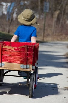 Boy, Wagon, Outdoor, Childhood, Unplugged, Child, Play