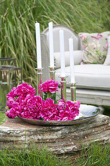 Candle, Candlestick, Flower, Pink, Decor, Nature, Plant