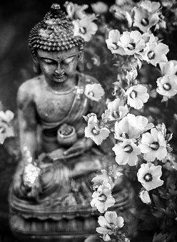 Buddha, Flower, Buddhism, Religion, Meditation, Faith