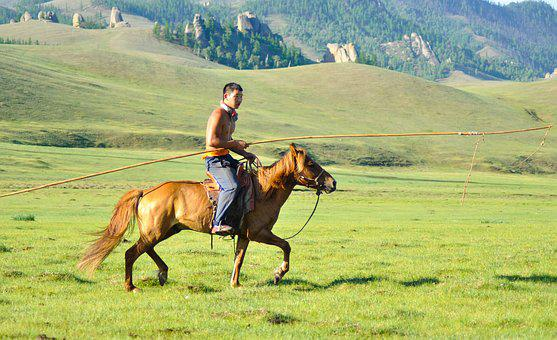 Wrangler, Horse Herder, Cowboy, Cattleman, Mongolian