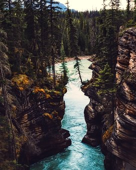 Canada, Landscape, Scenic, Gully, Ravine, Forest, Trees