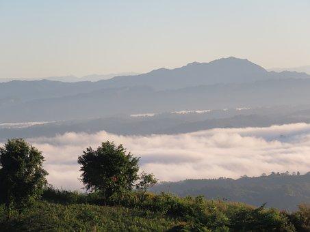 Nilgiri, Cloud, Tree, Nature, Sky, Landscape, Outdoors
