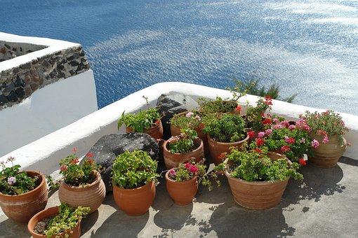 Garden, Island, Greece, Santorini, Outdoor, Scenic