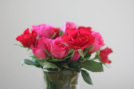 Roses, Strauss, Red, Pink, Bouquet, Bouquet Of Roses