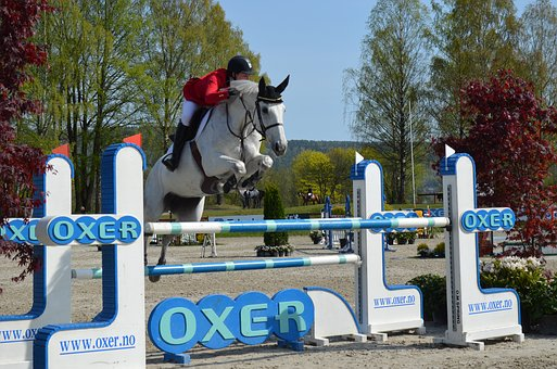 Showjumping, Showjumper, Equestrian, Sport, Competition