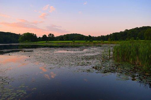 Sunset, Pond, Grass, Reeds, Swamp, Estuary, Nature