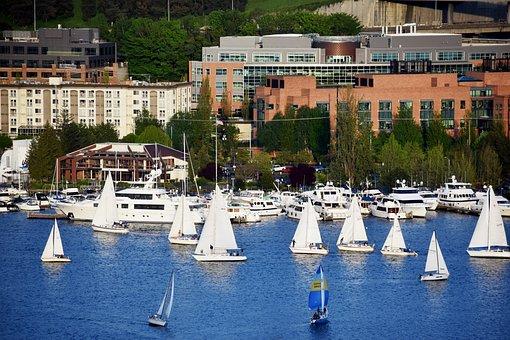 Sailing Boat, Sailor, Lake, Water, Blue, Boat, Nautical
