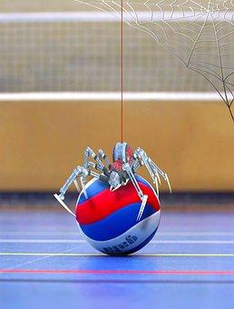 Spider, Volleyball, Network, Sport, Robot, Ball