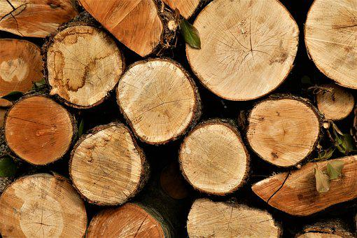 Firewood, Tree, Wood, Background, Billet