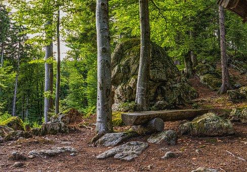Bavarian Forest, Bank, Hiking, Rest, Break, Bench