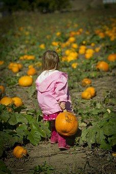 Girl Carrying Pumpkin, Pumpkin Patch, Girl Pumpkin