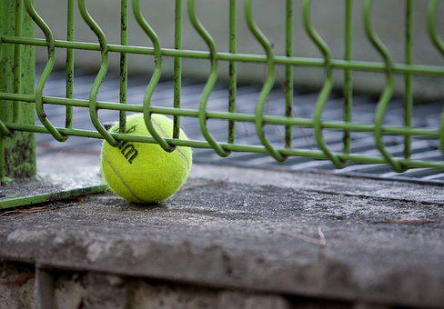 Tennis, Exercise, Hobby, Sport, Ball, Pence, School
