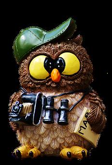 Owl, Tourist, Camera, Funny, Figure, Map, Binoculars