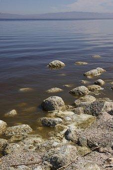 Salton Sea, Decay, Sea, Salton, California, Environment