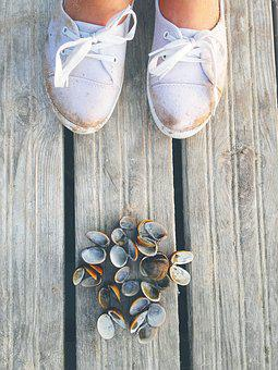 Shells, Bridge, Shoes, Travel, Holidays, Sneakers