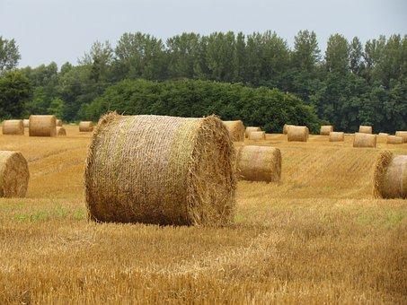 Straw Bale, Arable Land, Stubble