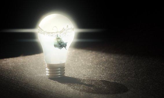 Idea, Important, Light Bulb, Fish, Underwater