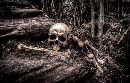Skull, Bones, Skeleton, Head, Death, Dead, Sign, Horror