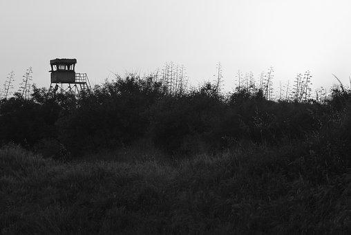 Guard Station, Light And Shadow, Dune