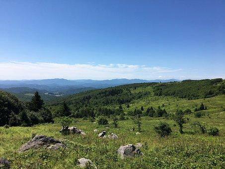Grayson Highlands, Virginia, Meadow