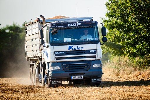 Lorry, Field, Grain, Harvest, Stubble, White, Trees