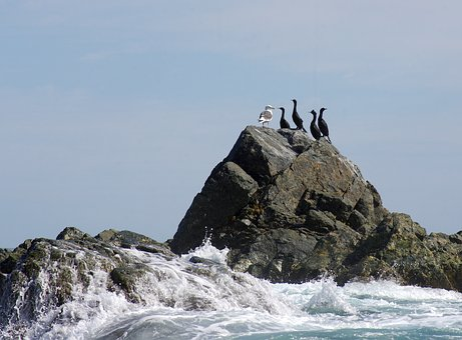 The Pacific Ocean, Coast, Beach, Rocks, Stones, Wave