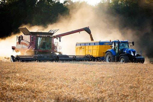 Harvest, Harvester, Tractor, Grain, Oats, Wheat